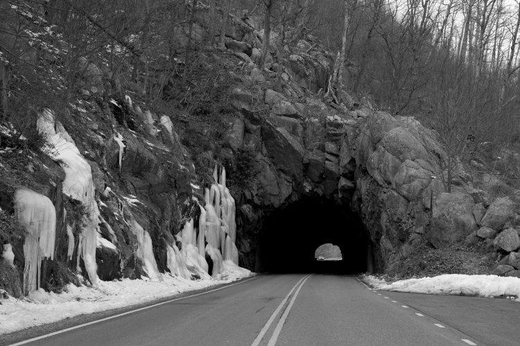 fclWhiteoak Canyon59