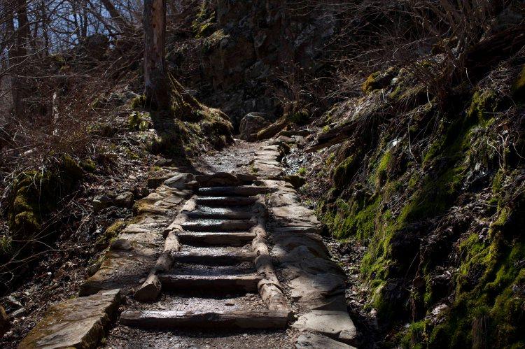 bsomeDark Hollow Falls13