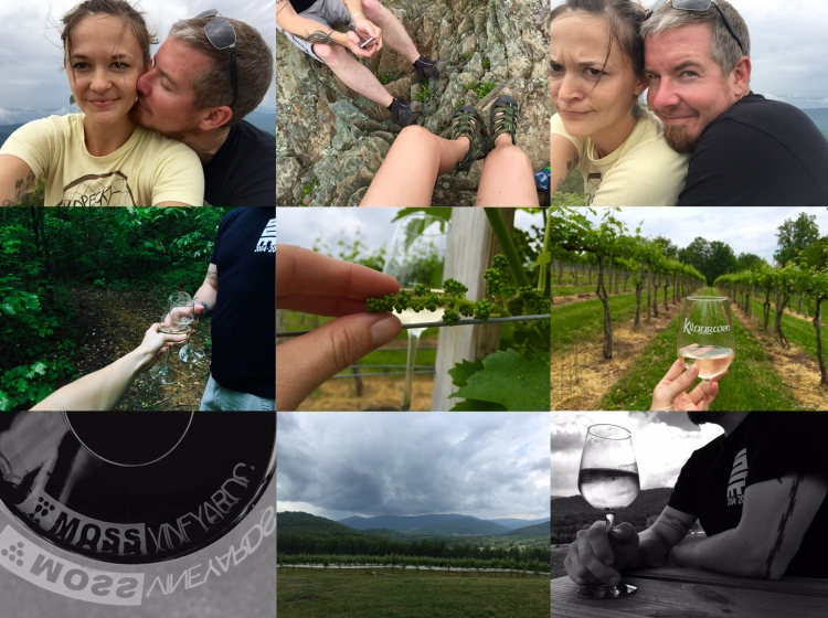 Bearfence_Wine_Tour